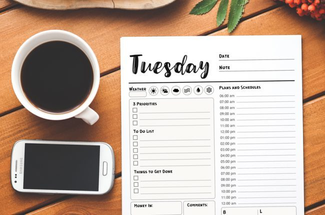 Printable 7 Day Planner, Daily Planner, Day Planner, Work Planner, Weekly Planner, Printable PDF, Instant Download